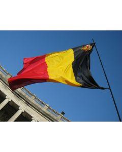 Bandiera belga con scudo 30 x 45 cm
